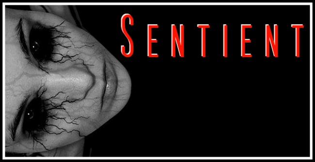 Sentient - The conflict model