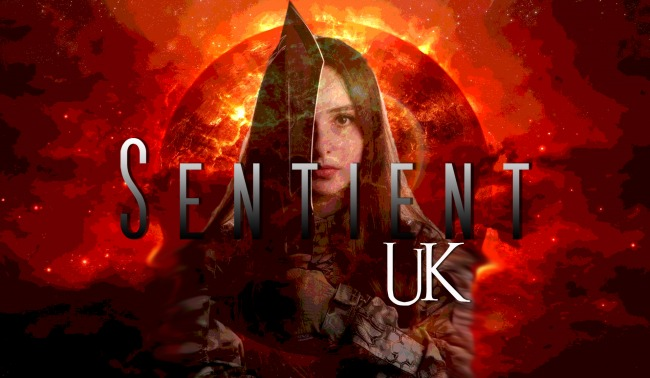 Sentient UK Pilot review - Draft 1